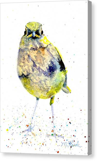 Teenage Robin Canvas Print