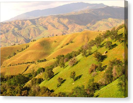 Tehachapi Topography Canvas Print