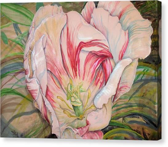 Tempting  Tulip Canvas Print
