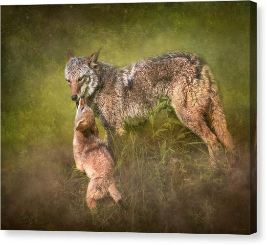Tender Moment Canvas Print
