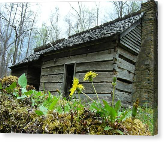 Tennessee Homestead Canvas Print by Linda Russell