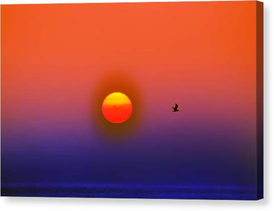 Tequila Sunrise Canvas Print - Tequila Sunrise by Bill Cannon