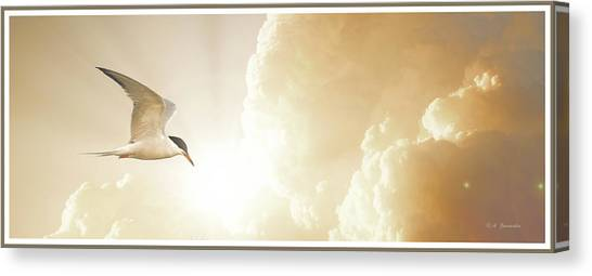 Tern In Flight, Spiritual Light Of Dusk Canvas Print
