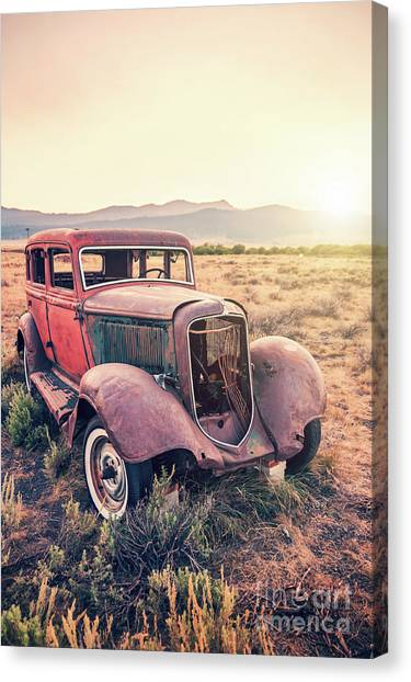 Carcass Canvas Print - Rusty by Delphimages Photo Creations