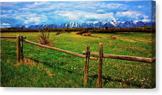 Canvas Print featuring the photograph Teton Park Spring by Norman Hall