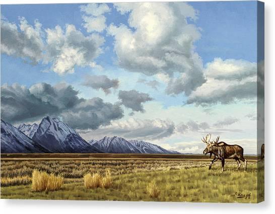 Tetons Canvas Print - Tetons-moose by Paul Krapf