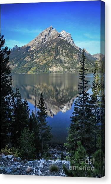 Tetons National Park Canvas Print by Webb Canepa