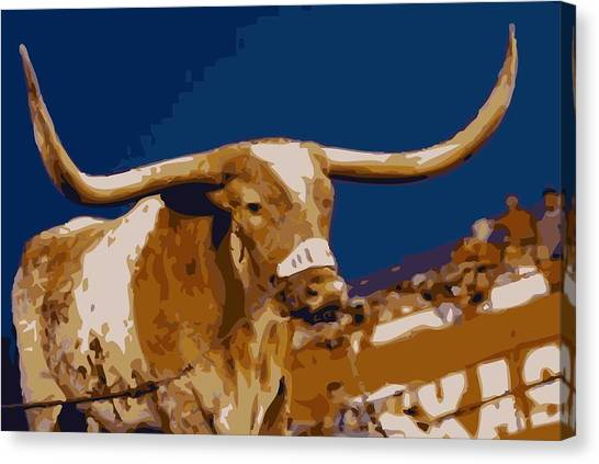 Austin Texas Canvas Print - Texas Bevo Color 16 by Scott Kelley