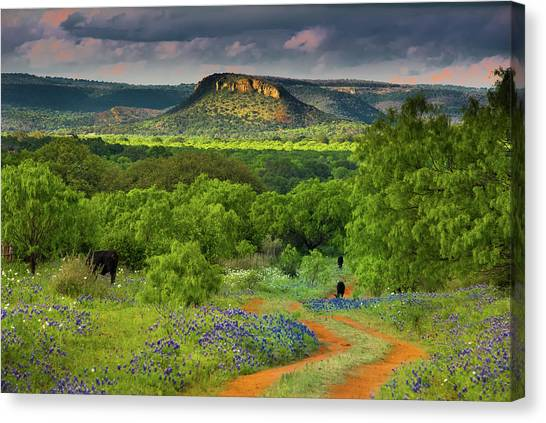 Texas Hill Country Ranch Road Canvas Print