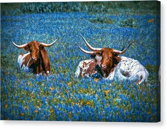Texas In Blue Canvas Print
