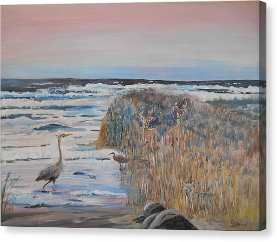 Texas - Padre Island Canvas Print