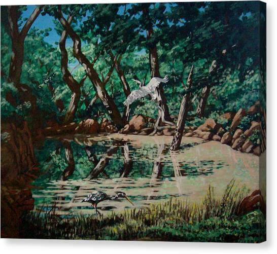 Texas Pond Canvas Print by David  Larcom