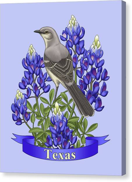 Mockingbird Canvas Print - Texas State Mockingbird And Bluebonnet Flower by Crista Forest