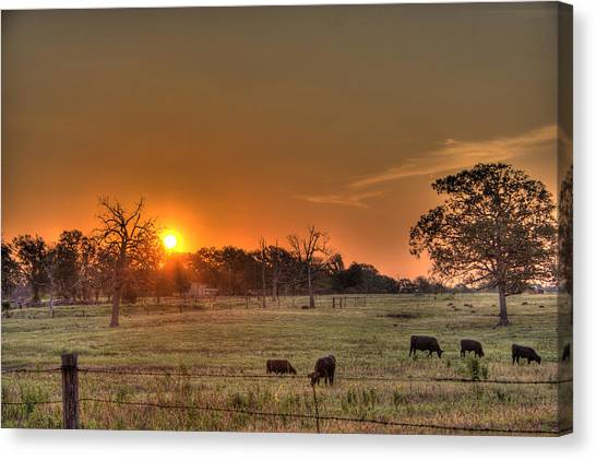 Canvas Print featuring the photograph Texas Sunrise by Barry Jones