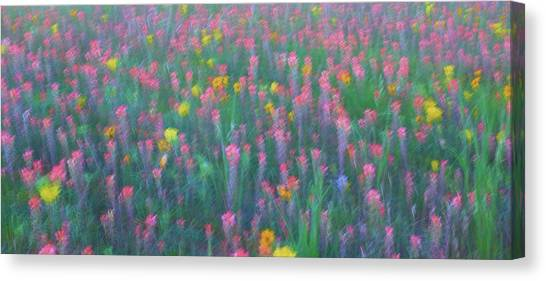 Texas Wildflowers Abstract Canvas Print