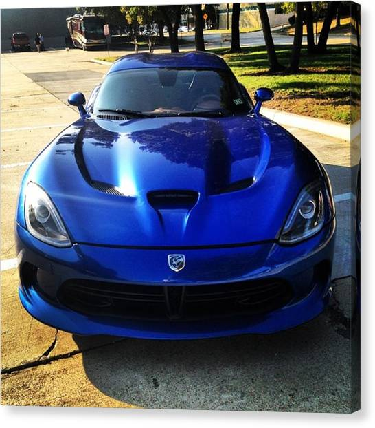 Vipers Canvas Print - #texasautowarehouse #viper #bluebueaty by Allison Ploehn