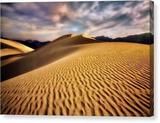Textured Dunes  Canvas Print