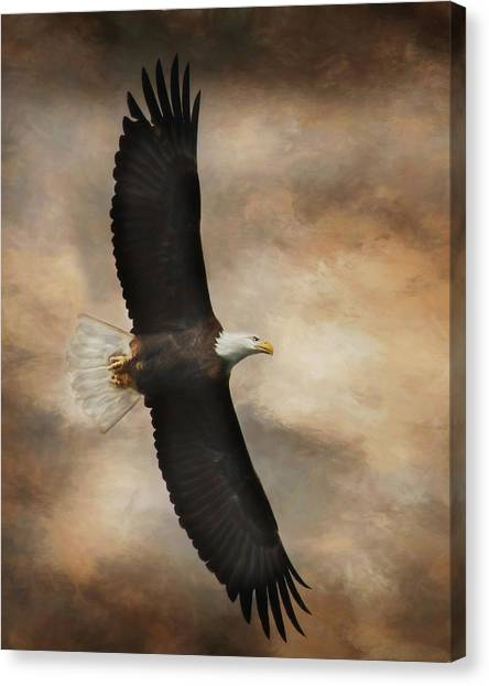 Eagle Scout Canvas Print - Textured Eagle by Lori Deiter