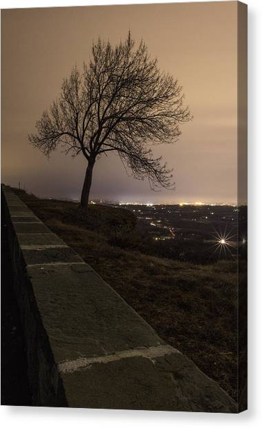 Thacher Park Twilight Canvas Print