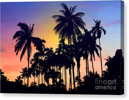 Palm Trees Sunsets Canvas Print - Thailand by Mark Ashkenazi