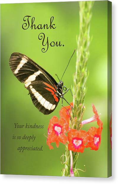 Thank You - Butterfly Canvas Print