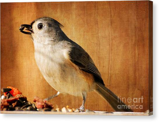 Titmice Canvas Print - Thanksgiving's Bounty by Lois Bryan
