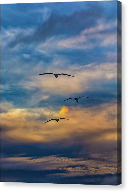Canvas Print featuring the photograph The 3 by Mike Trueblood
