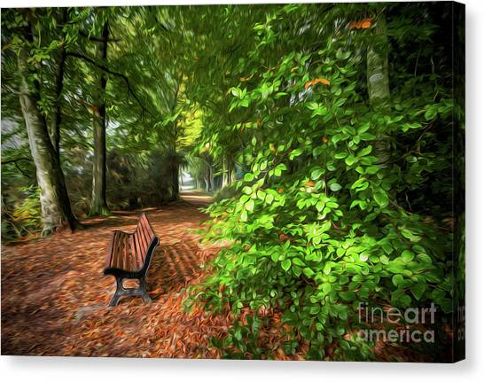 The Abbey's Bench 2 Canvas Print