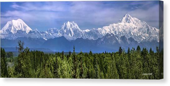 Canvas Print featuring the photograph The Alaska Range by Claudia Abbott