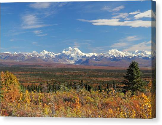 The Alaska Range From The Denali Highway Canvas Print