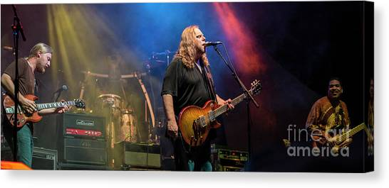 The Allman Brothers Band Canvas Print - The Allman Brothers Band by David Oppenheimer
