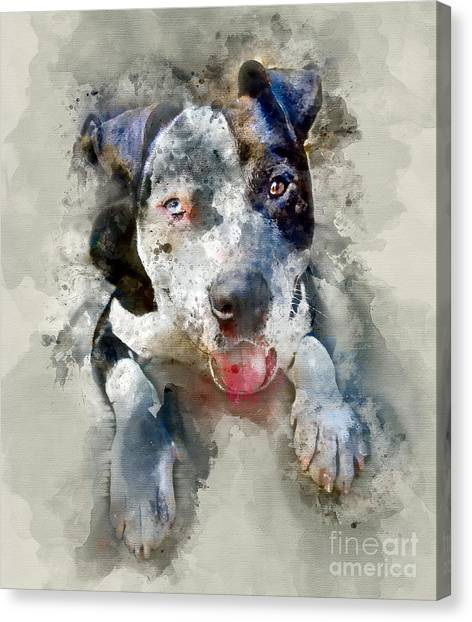 Pitbulls Canvas Print - The American Pitbull by Jon Neidert