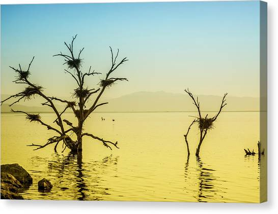 Canvas Print featuring the photograph The Ancient Sea by Mike Trueblood