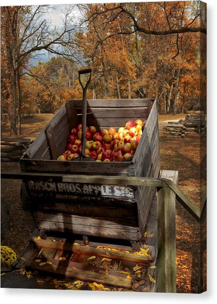 The Apple Bin Canvas Print