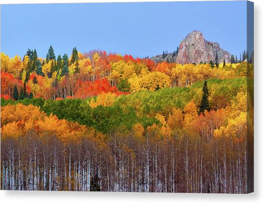 The Autumn Blanket Canvas Print
