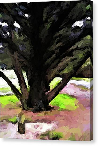 The Avenue Of Trees 1 Canvas Print