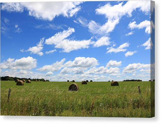 The Bales Of Summer 3 Canvas Print