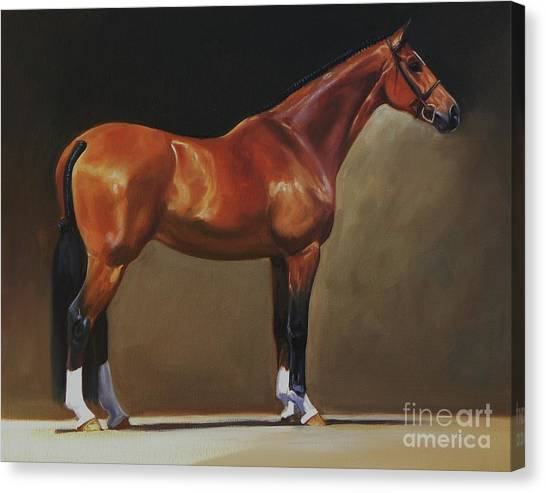 Thoroughbreds Canvas Print - The Bay Hunter by Janet  Crawford