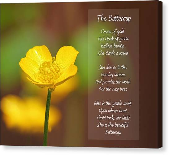 The Beautiful Buttercup Poem Canvas Print