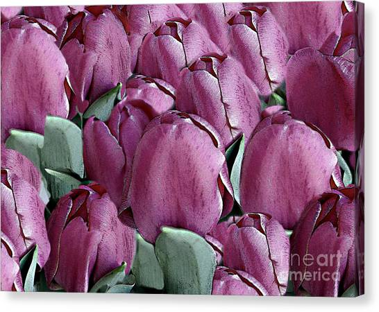 The Beauty And Depth Of A Bed Of Tulips Canvas Print