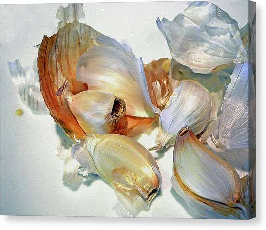 The Beauty Of Garlic Canvas Print