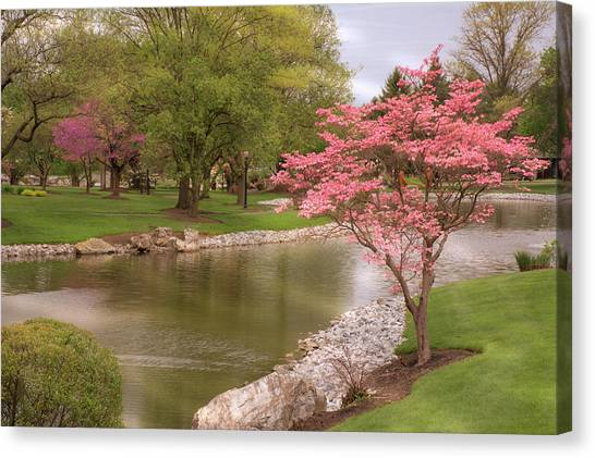 Canvas Print featuring the photograph The Beauty Of Spring by Angie Tirado