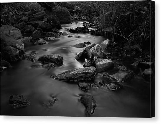 The Beck Canvas Print