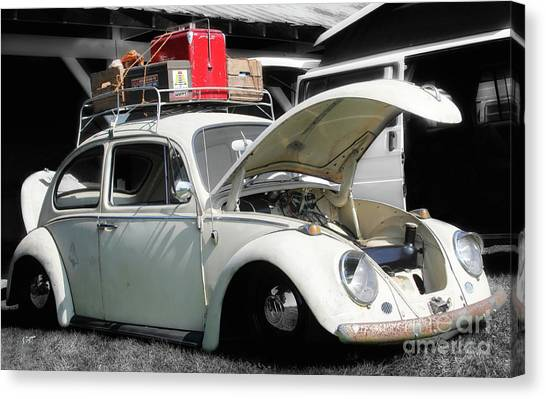 The Beetle  Canvas Print by Steven Digman