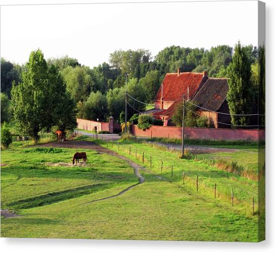 The Belgian Countryside Canvas Print by David L Griffin