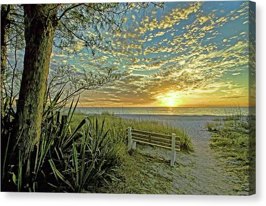 The Bench Canvas Print