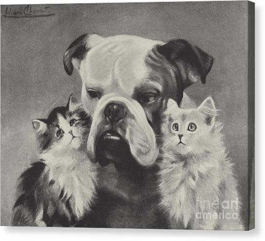 English Bull Dogs Canvas Print - The Best Of Friends by Lilian Cheviot