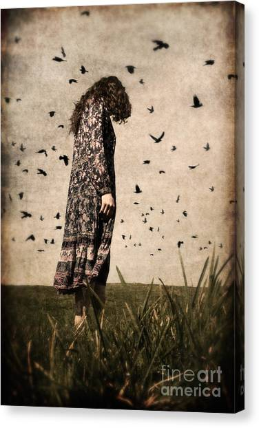 The Birds Canvas Print
