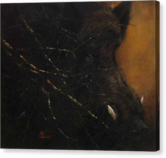 The Black Wildboar Canvas Print