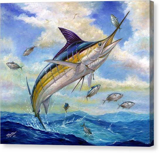 Chico Canvas Print - The Blue Marlin Leaping To Eat by Terry  Fox